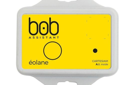 BOB-Assistant; eine LoRa-Sensor Lösung mit embedded KI