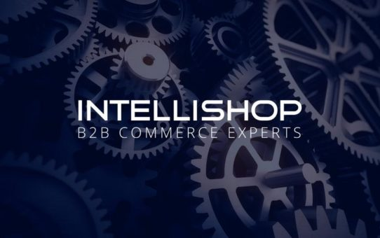 Systemintegration mit IntelliShop: B2B E-Commerce im Maschinenbau