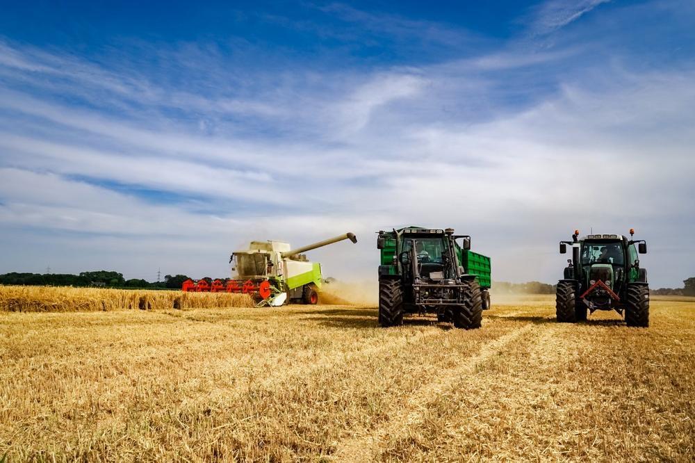 Basis der Ernährungsmittelindustrie - die Landwirtschaft